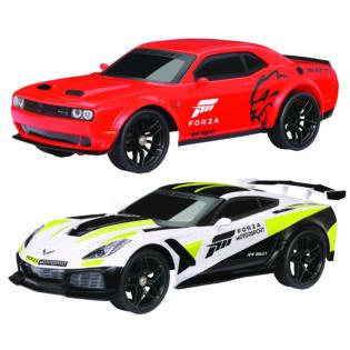 1:16 Scale Forza Motorsport TwinPack